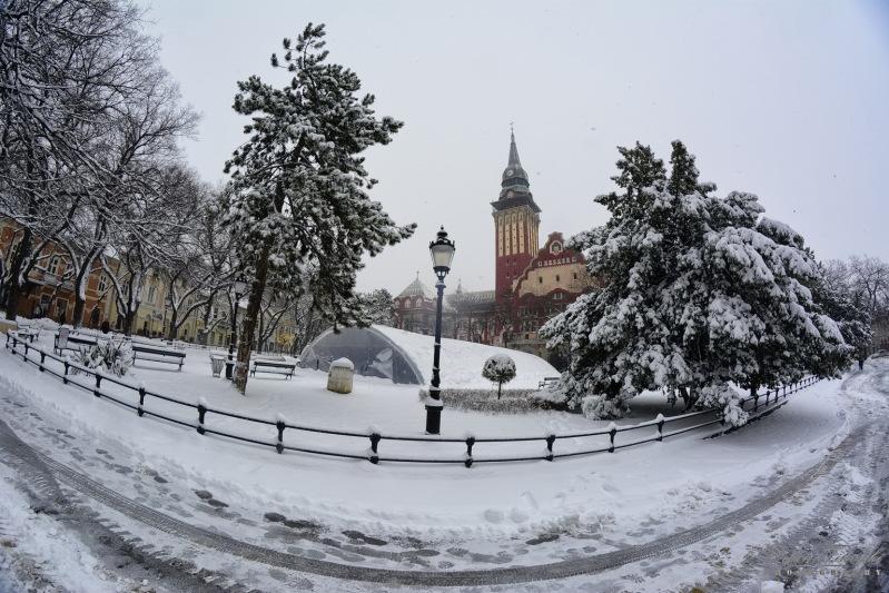 sneg-jan-2014